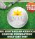 ACCF Golf Day 2017